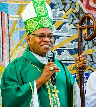 dom henrique portal diocese de dourados
