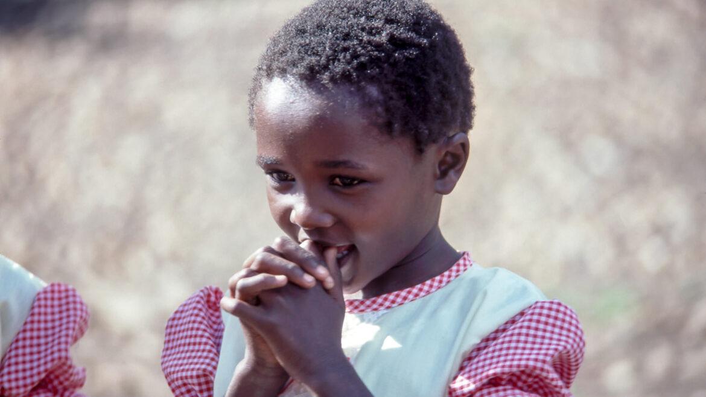 Diocese de Dourados Infância Missionária